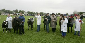 Omagh Show (2008)