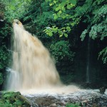 A secluded riverside walk with a spectacular waterfall. Parking and picnic facilities on site. Operated by the Department of Culture Arts and Leisure.