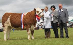 omagh show