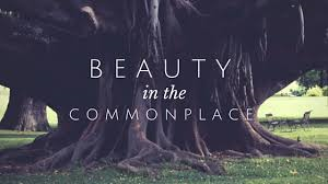 Beauty in the Commonplace