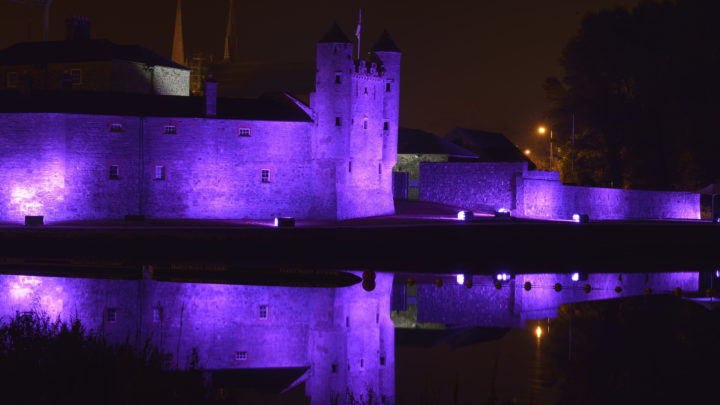 Purple   Enniskillen Castle 006
