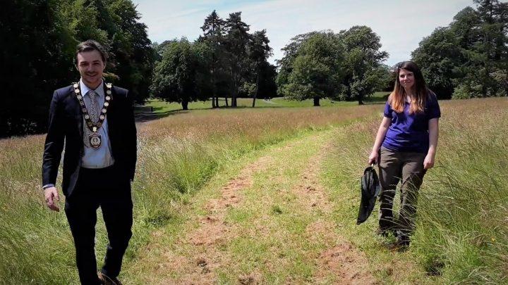 Arleston Meadow (2)