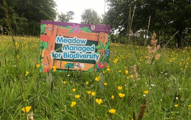 Meadow managed sign