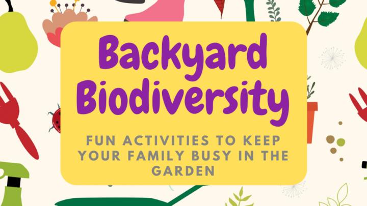 Backyard biodiversity