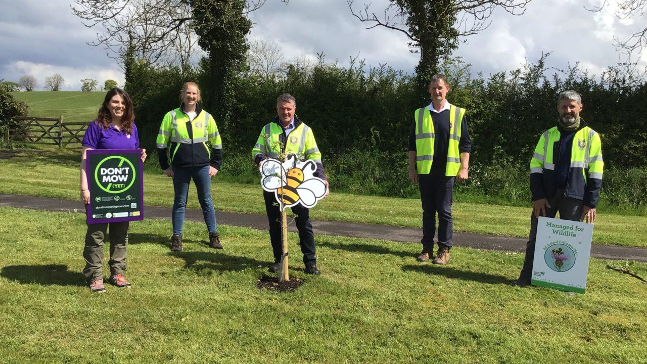 All Ireland Pollinator Plan   Staff